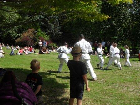 Web Karate 2